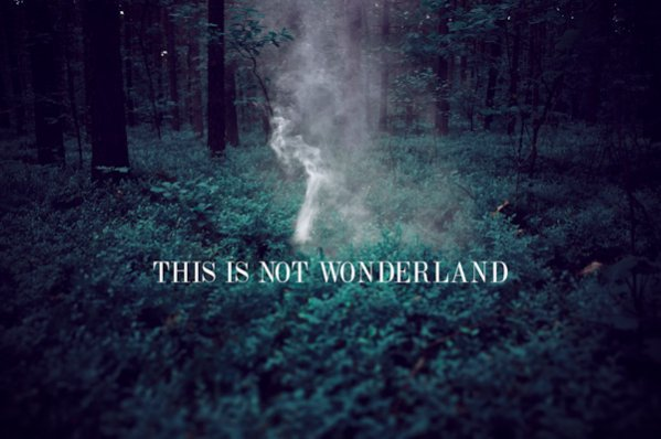 This is not wonderland autorstwa Aleksandry Zaborowskiej