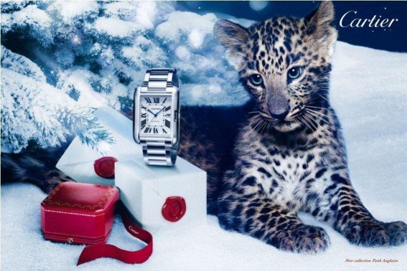 gwiazdkowa kampania biżuterii Cartier