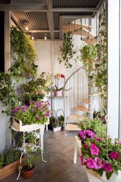 kwiaciarnia Chilli Garden