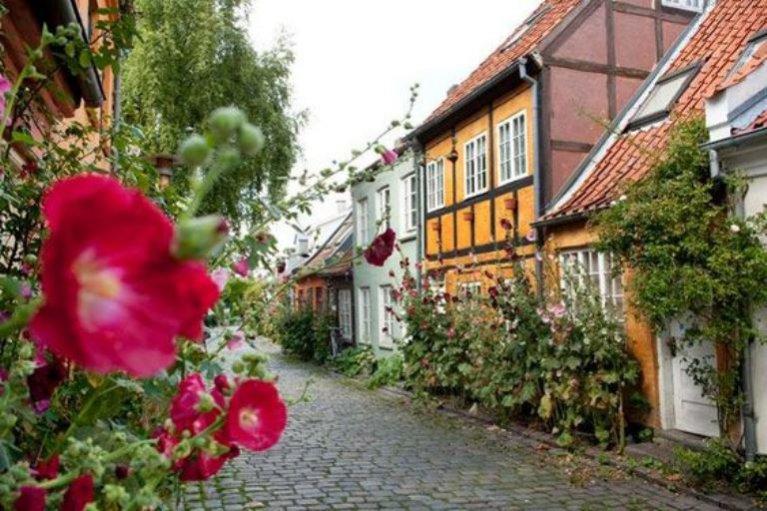 Najbardziej romantyczne miejsca na ślub w odległym zakątku świata: AARHAUS, DANIA (1)