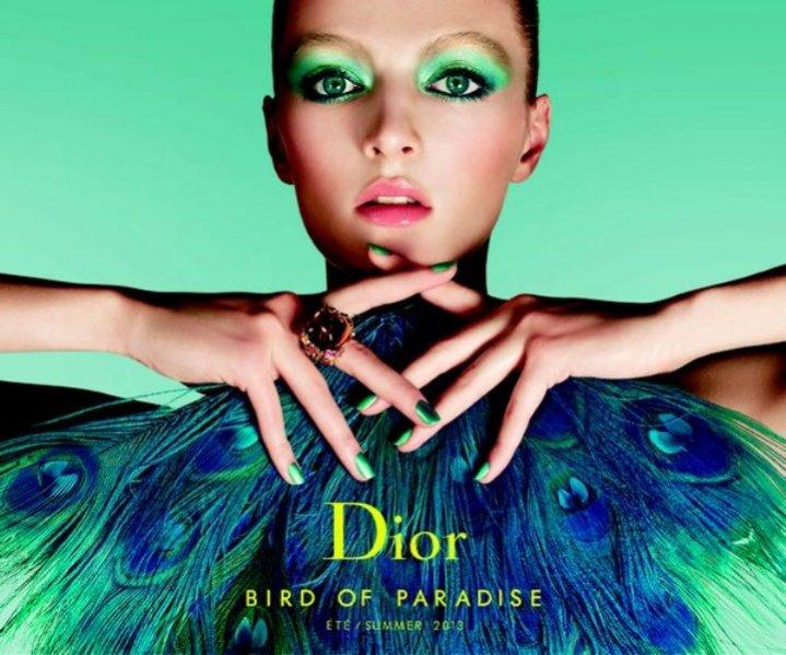 kolekcja kosmetyków do makijażu Dior na lato 2013 - Bird of Paradise