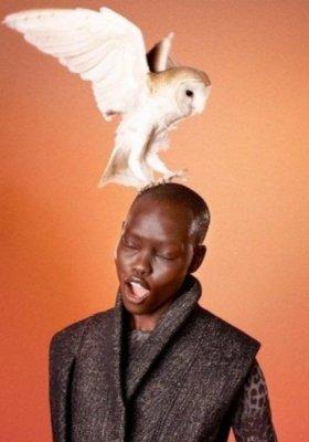 "KAMPANIA ""BIRD OF PREY"" EDUN NA JESIEŃ ZIMĘ 2012"