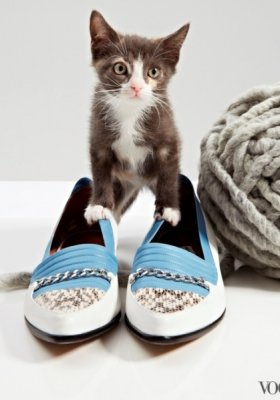 THE CAT AND THE FLAT – NIETYPOWA SESJA VOGUE US