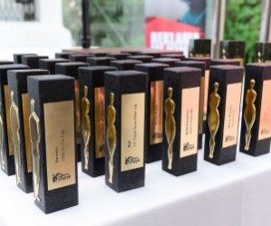 1. Nagroda Qltowy Koncept dla linii Dairy Fun marki Delia Cosmetics