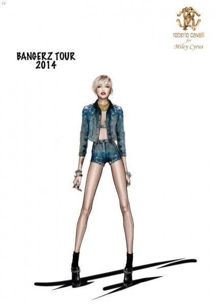 1. Roberto Cavalli dla Miley Cyrus