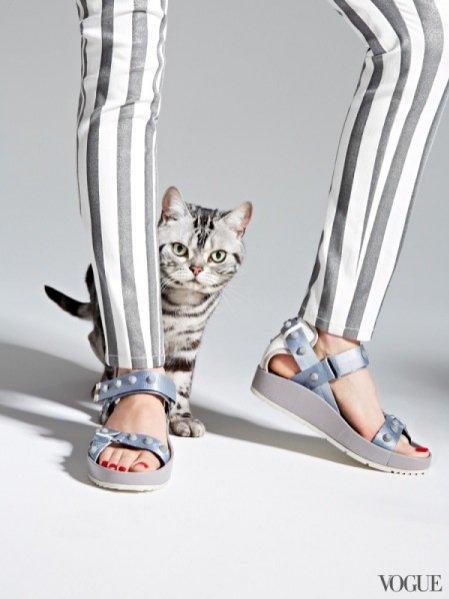 1. The cat and the flat - najmodniejsze buty na wiosnę w sesji Vogue US