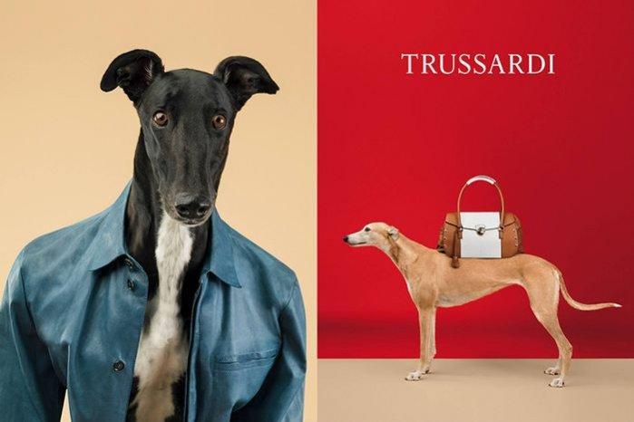 1. Kampania Trussardi na sezon wiosna lato 2014