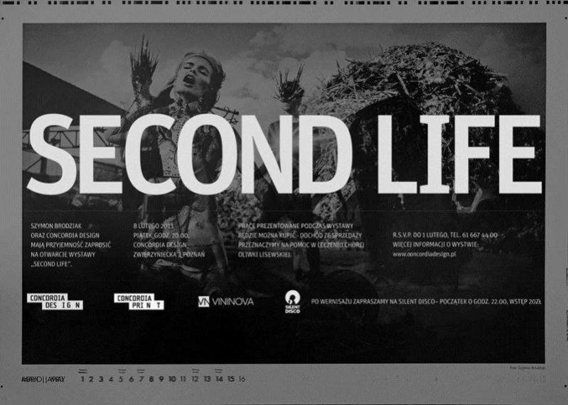 wystawa Second Life Szymona Brodziaka