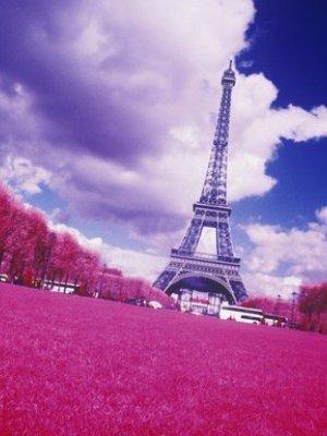 MADE IN FRANCE – FRANCJA INWESTUJE W RODZIMY DEISGN