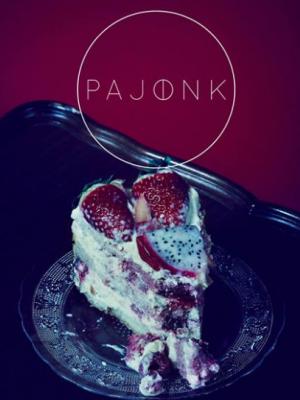 """PAJONK – KAMPANIA KOLEKCJI """"PARADISE"""" – SEZON WIOSNA LATO 2014"""